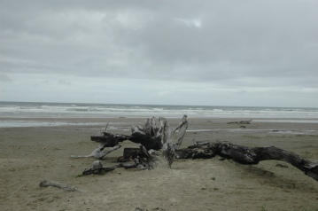 Oregon 2009 255