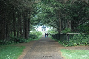 Path to Cape Meares Lighthouse, Oregon