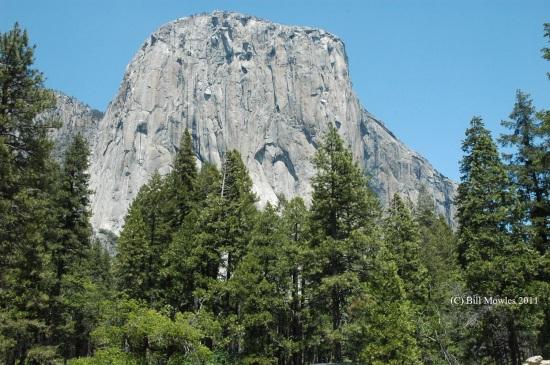 Yosemite 2011 WRM 133 (C)
