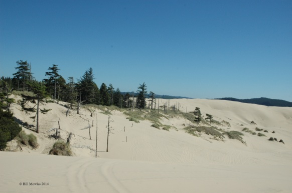 Oregon Sand Dunes - mountains of sand