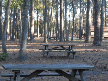 Empty campground