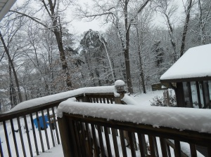 The snowy terrace and backyard