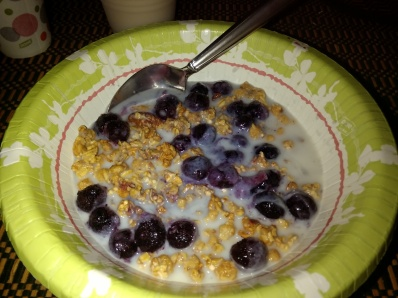 Blueberries and granola cereal.