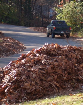 One of many piles of leaves raked up from the yard in the fall.