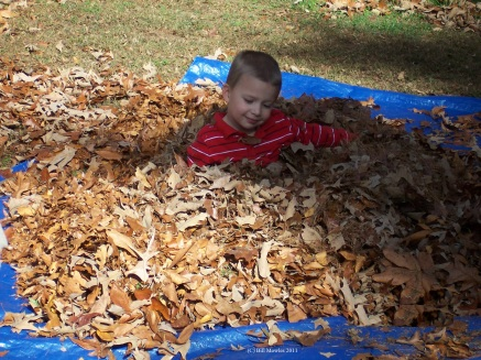 Child in a pile of leaves!