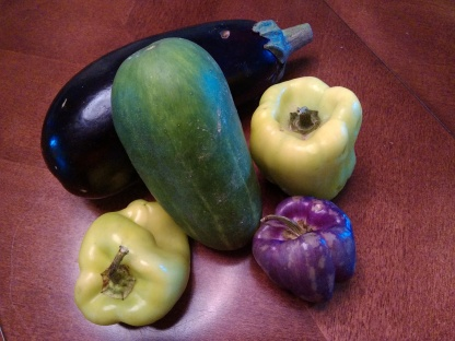 Eggplant, Cucumber, Yellow and Purple Peppers from vegetable box.