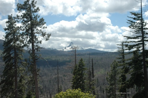 Mount Washington in distance, Oregon