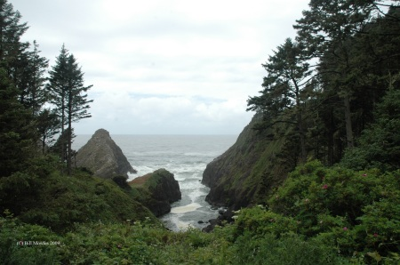 Rugged Oregon coastline at the ocean