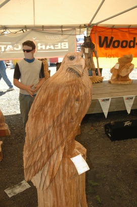 Chain saw carved hawk.
