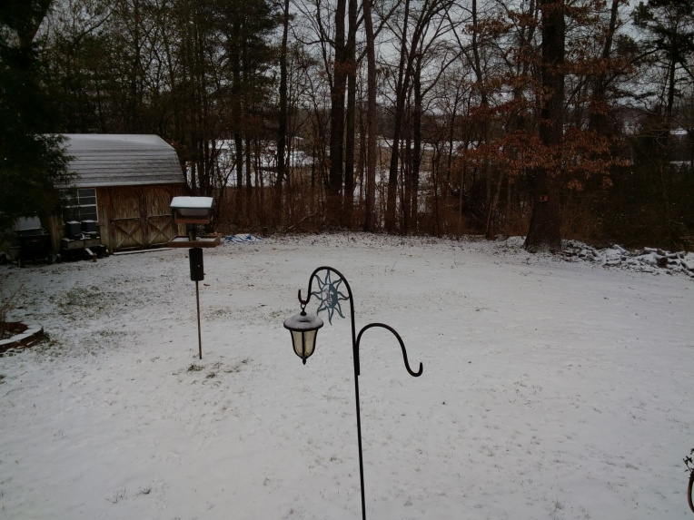 Snow - Bird feeder