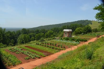 Garden - Monticello