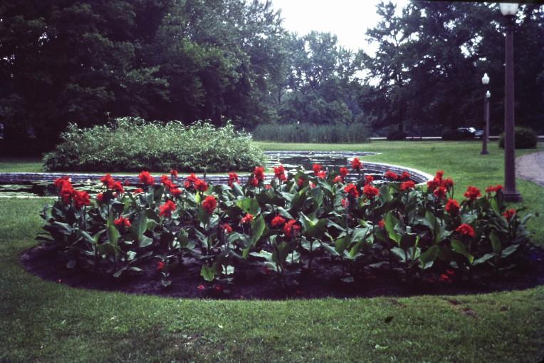 USED Flower garden