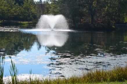 spring-lake-0648