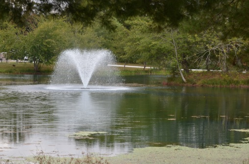 spring-lake-fountain-and-ripples