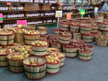 Carvers orchard 10-2016 - even more apples