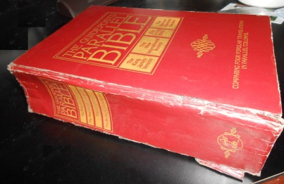 Holy Bible parallel translation