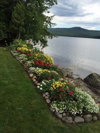 Flower garden in Maine from Bette