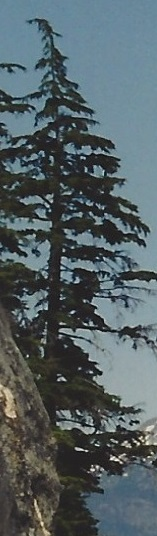 Oregon picture perfect mountains - cropped four
