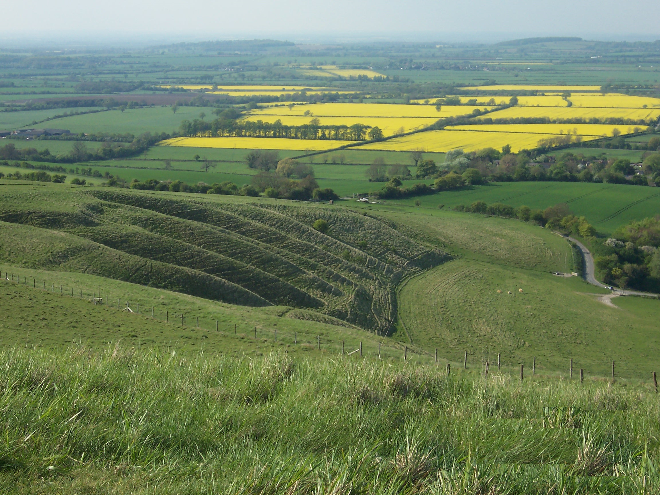 White horse farming terraces