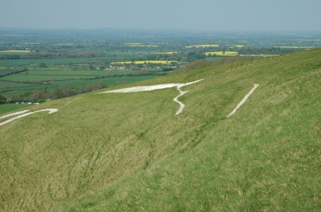 white horse from atop mountain