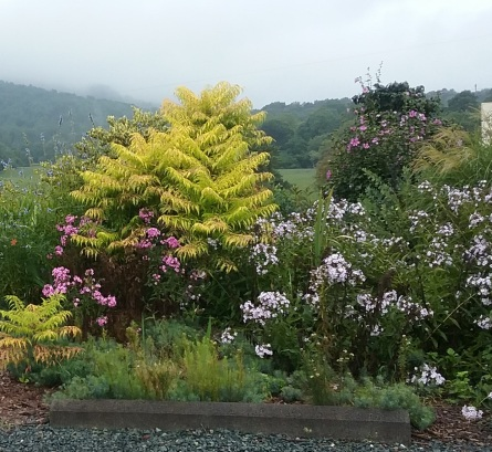 Gardens at Jefferson Vineyards, Charlottesville VA 2