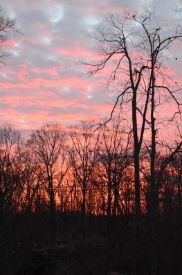 Sunset over Annandale VA 2