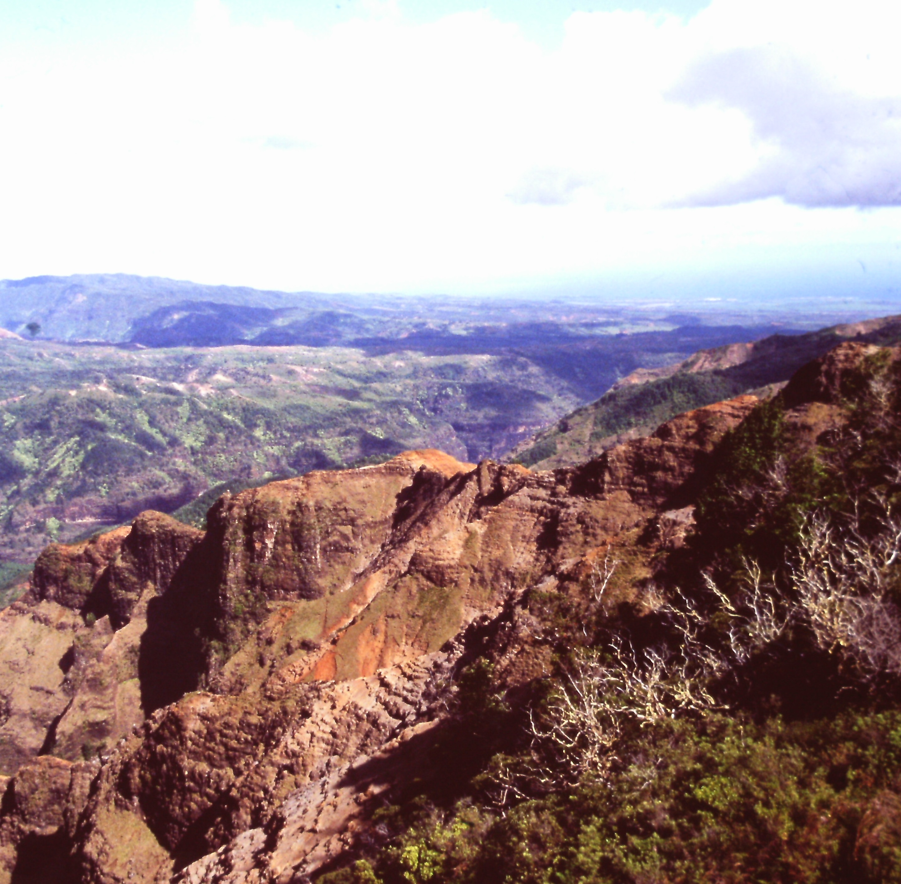 Waimea Canyon Kauai mountains