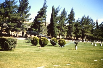 Sunnyslope Cemetery, CA '56