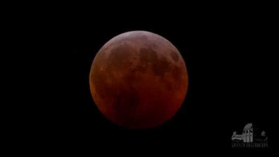griffith observatory lunar eclipse