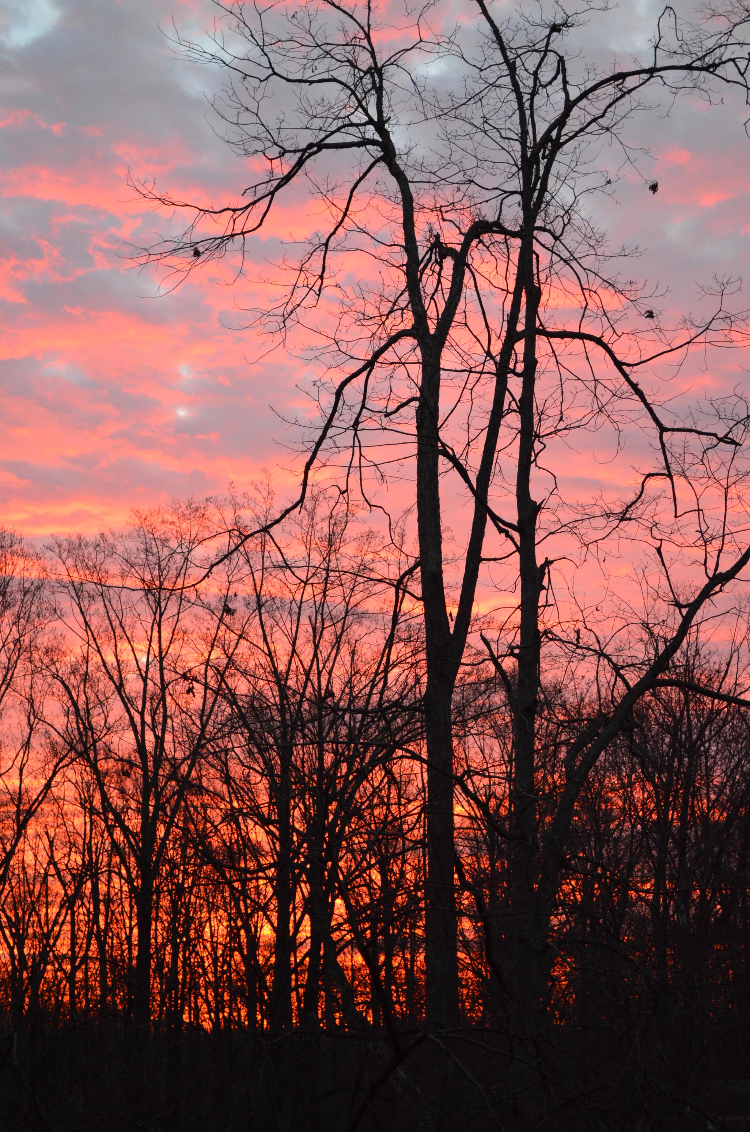 Sunset over Annandale VA 4