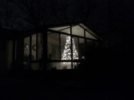 Christmas tree on porch from yard