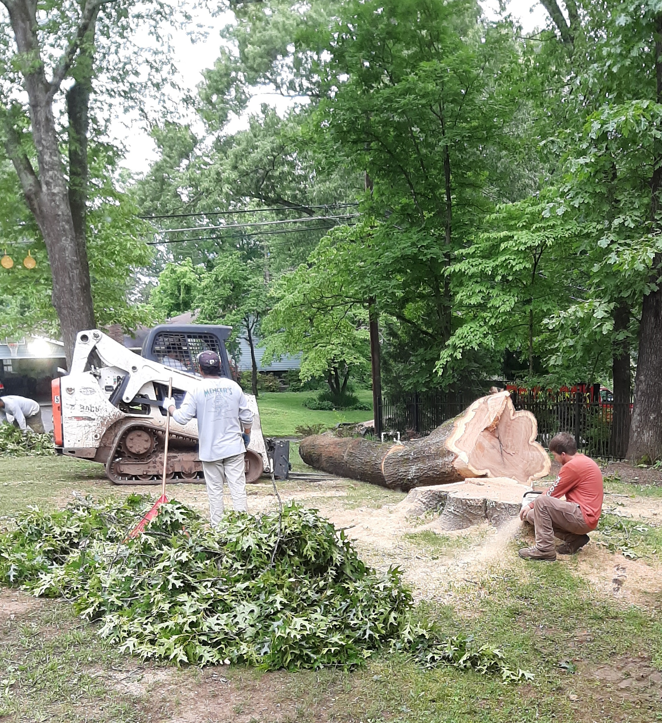 Man working on stump showing the last part of the tree trunk laying on ground